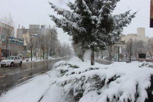 آخرین نفس های پاییز سرعین زمستانی شد+عکس